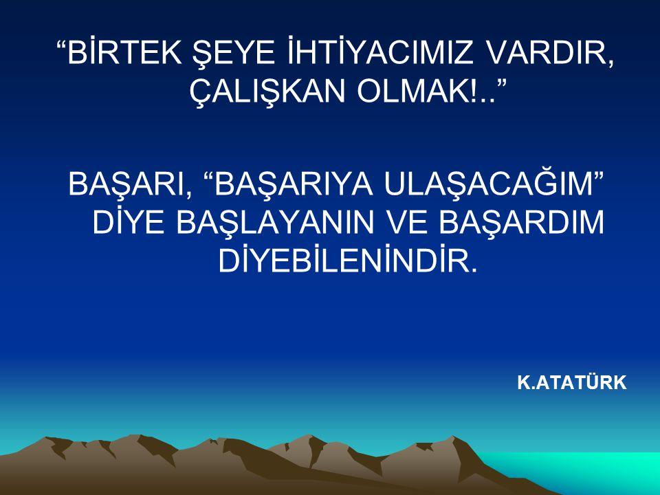 BİRTEK ŞEYE İHTİYACIMIZ VARDIR, ÇALIŞKAN OLMAK!..