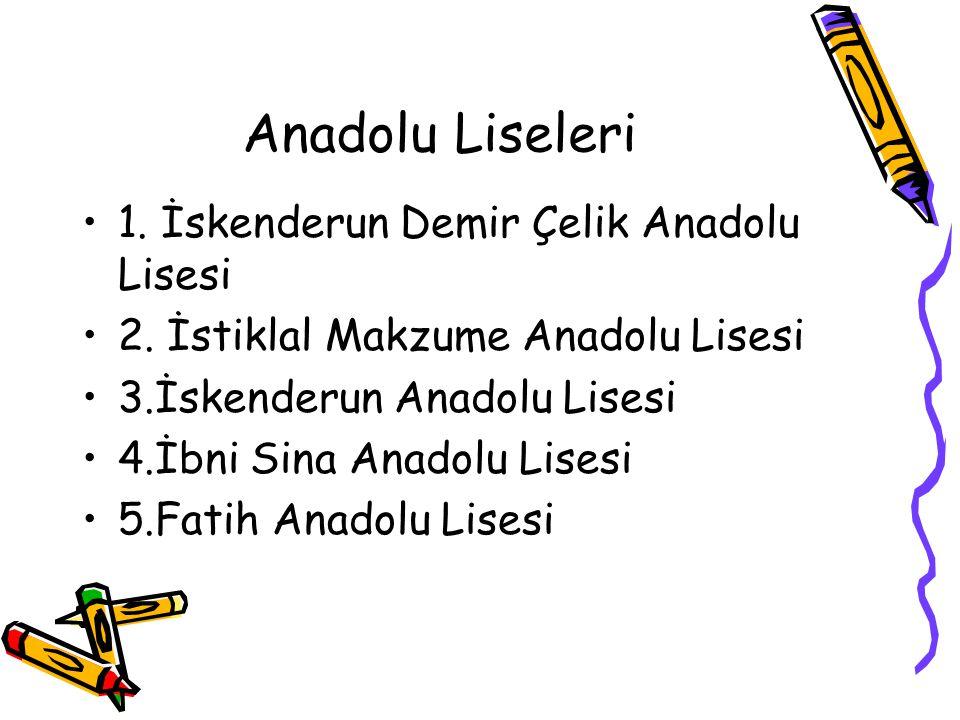 Anadolu Liseleri 1. İskenderun Demir Çelik Anadolu Lisesi
