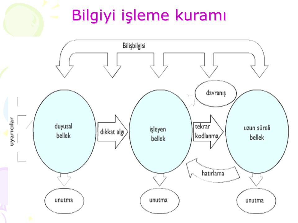 Bilgiyi işleme kuramı