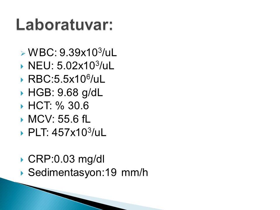 Laboratuvar: WBC: 9.39x103/uL NEU: 5.02x103/uL RBC:5.5x106/uL