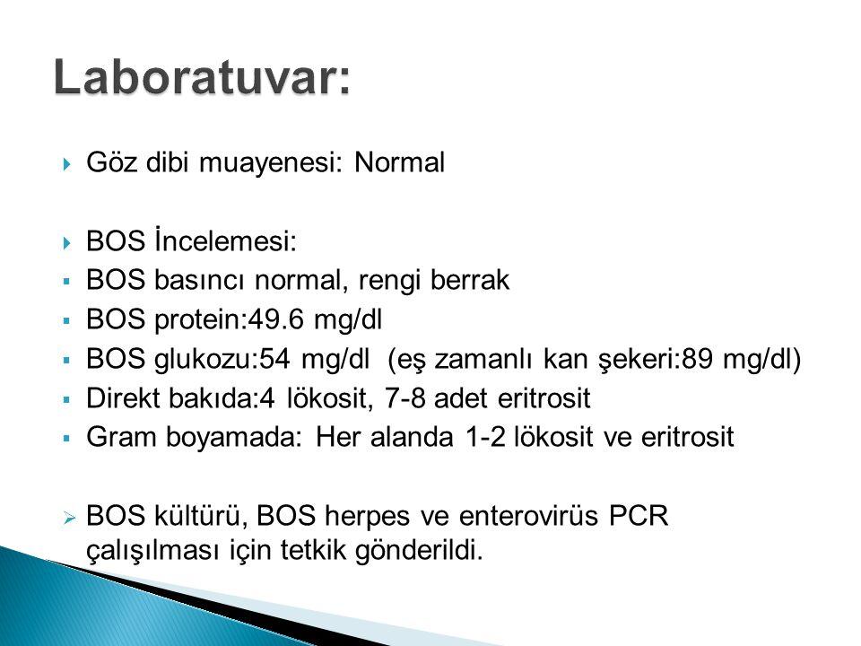 Laboratuvar: Göz dibi muayenesi: Normal BOS İncelemesi: