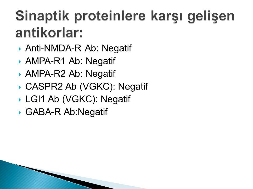 Sinaptik proteinlere karşı gelişen antikorlar: