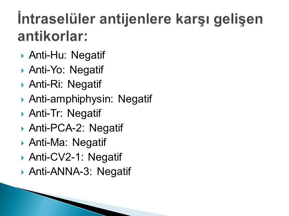 İntraselüler antijenlere karşı gelişen antikorlar: