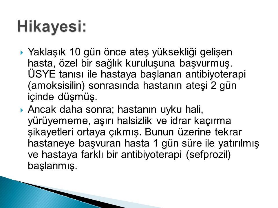 Hikayesi: