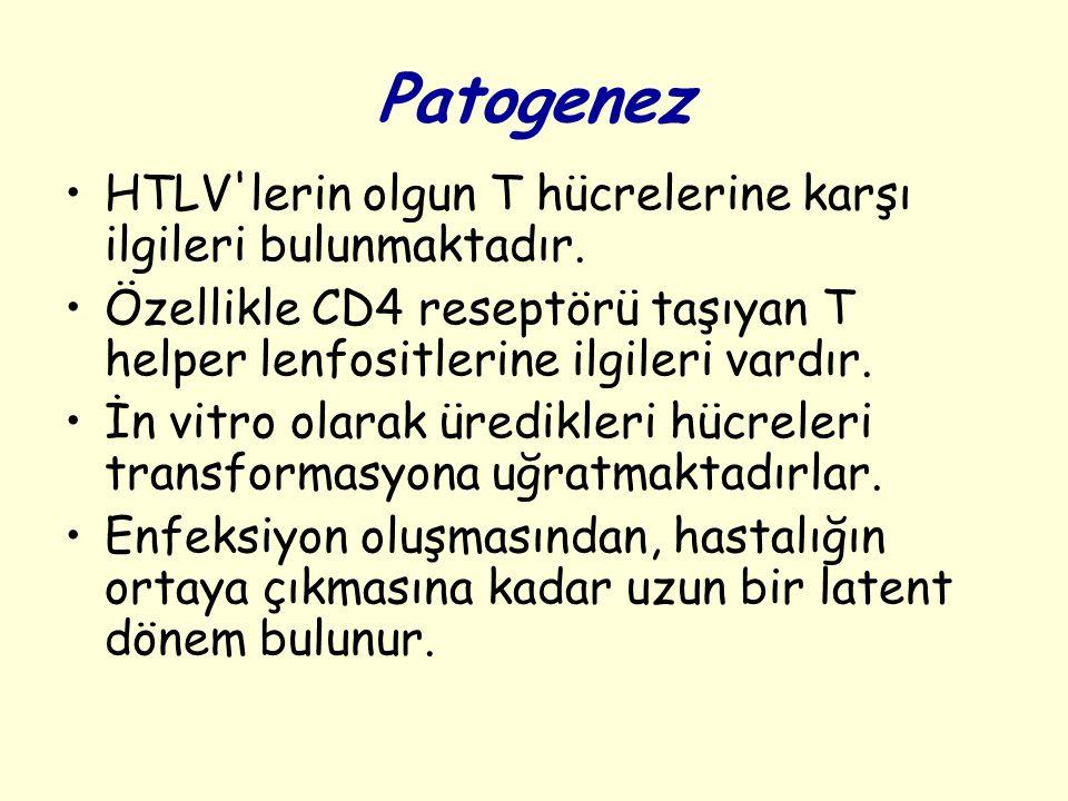 Patogenez HTLV lerin olgun T hücrelerine karşı ilgileri bulunmaktadır.