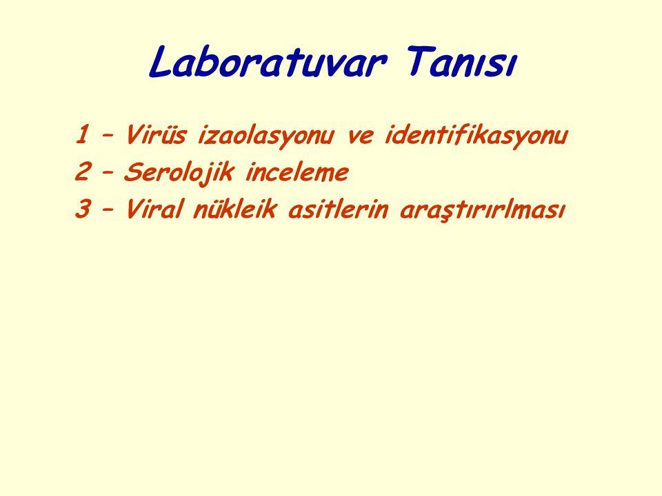 Laboratuvar Tanısı 1 – Virüs izaolasyonu ve identifikasyonu