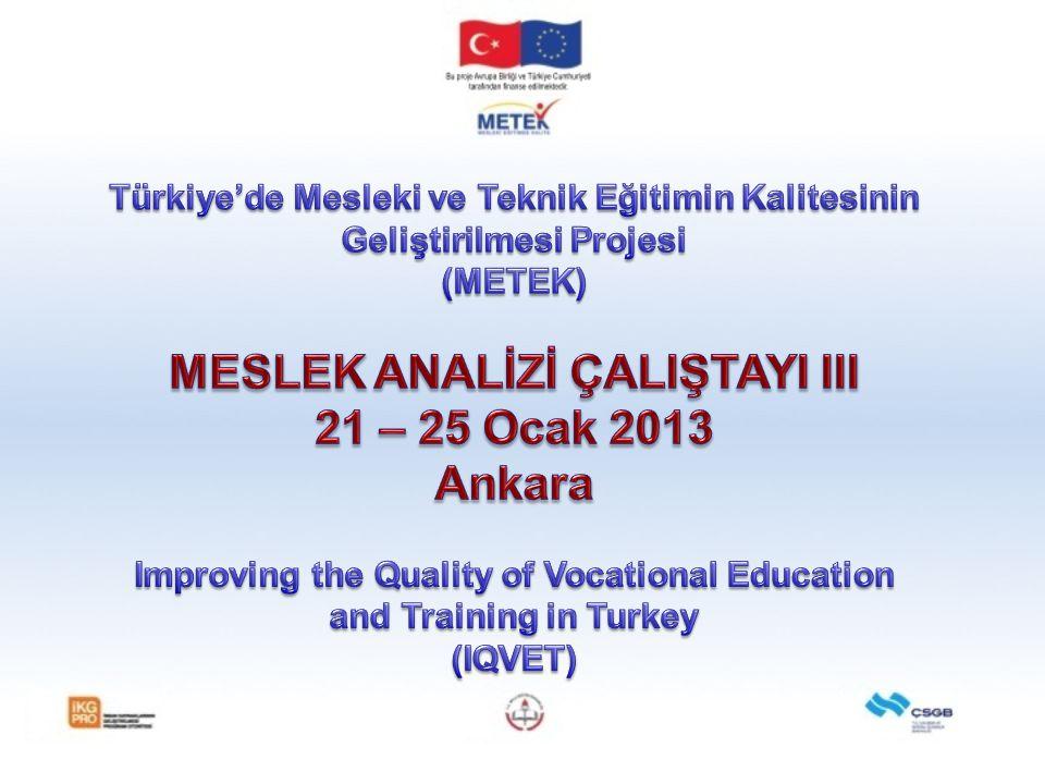 MESLEK ANALİZİ ÇALIŞTAYI III 21 – 25 Ocak 2013 Ankara