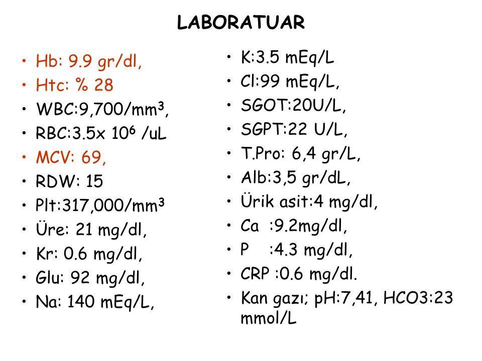 LABORATUAR K:3.5 mEq/L Hb: 9.9 gr/dl, Cl:99 mEq/L, Htc: % 28