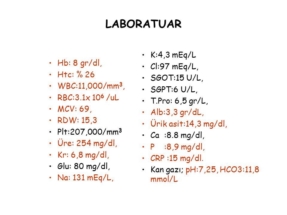 LABORATUAR K:4,3 mEq/L Cl:97 mEq/L, Hb: 8 gr/dl, SGOT:15 U/L,