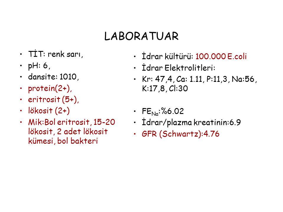LABORATUAR TİT: renk sarı, İdrar kültürü: 100.000 E.coli pH: 6,