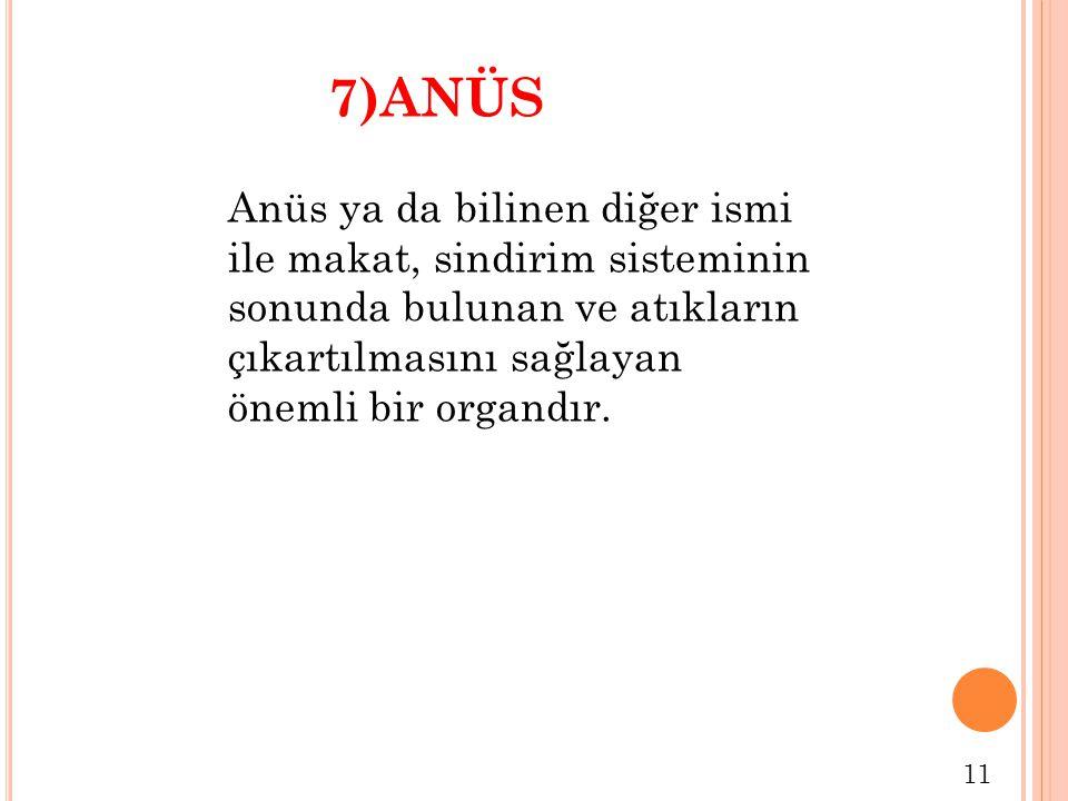 7)ANÜS Anüs ya da bilinen diğer ismi ile makat, sindirim sisteminin sonunda bulunan ve atıkların çıkartılmasını sağlayan önemli bir organdır.