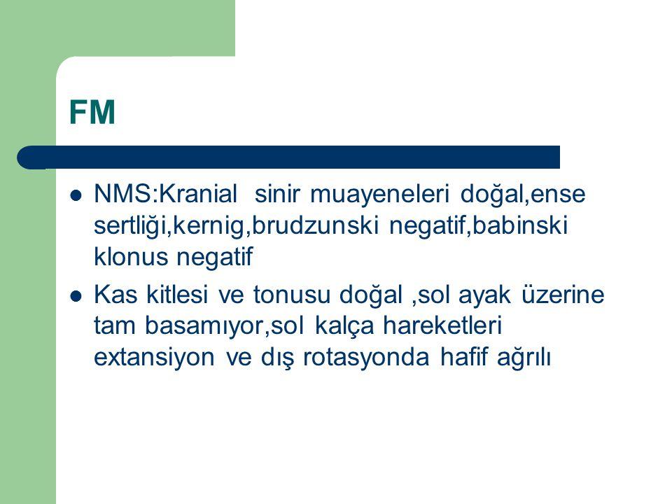 FM NMS:Kranial sinir muayeneleri doğal,ense sertliği,kernig,brudzunski negatif,babinski klonus negatif.