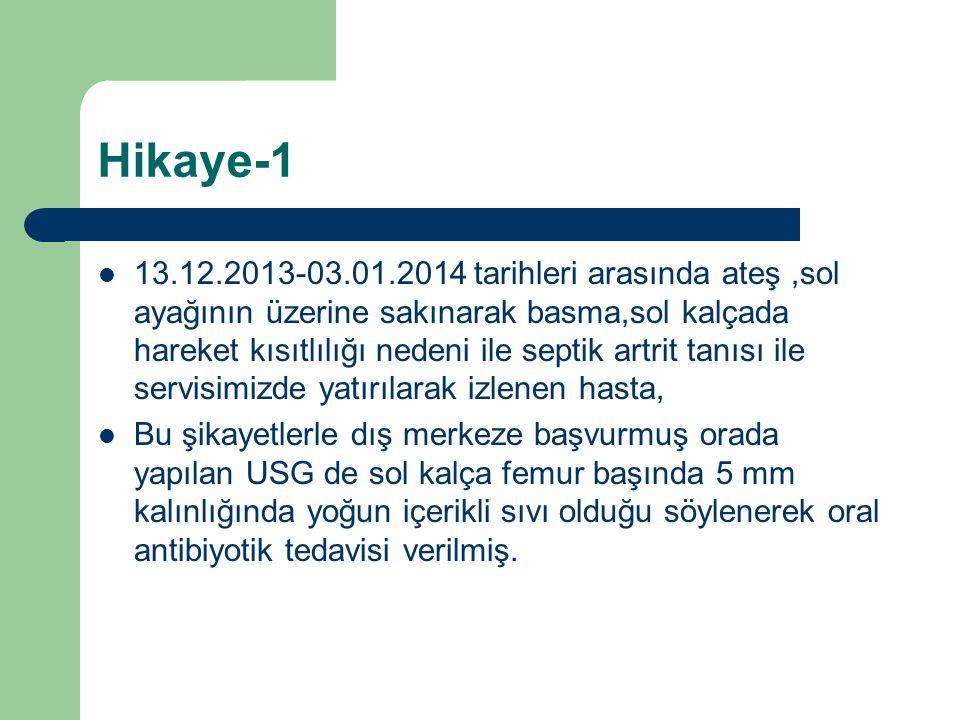Hikaye-1