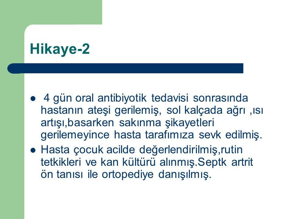 Hikaye-2
