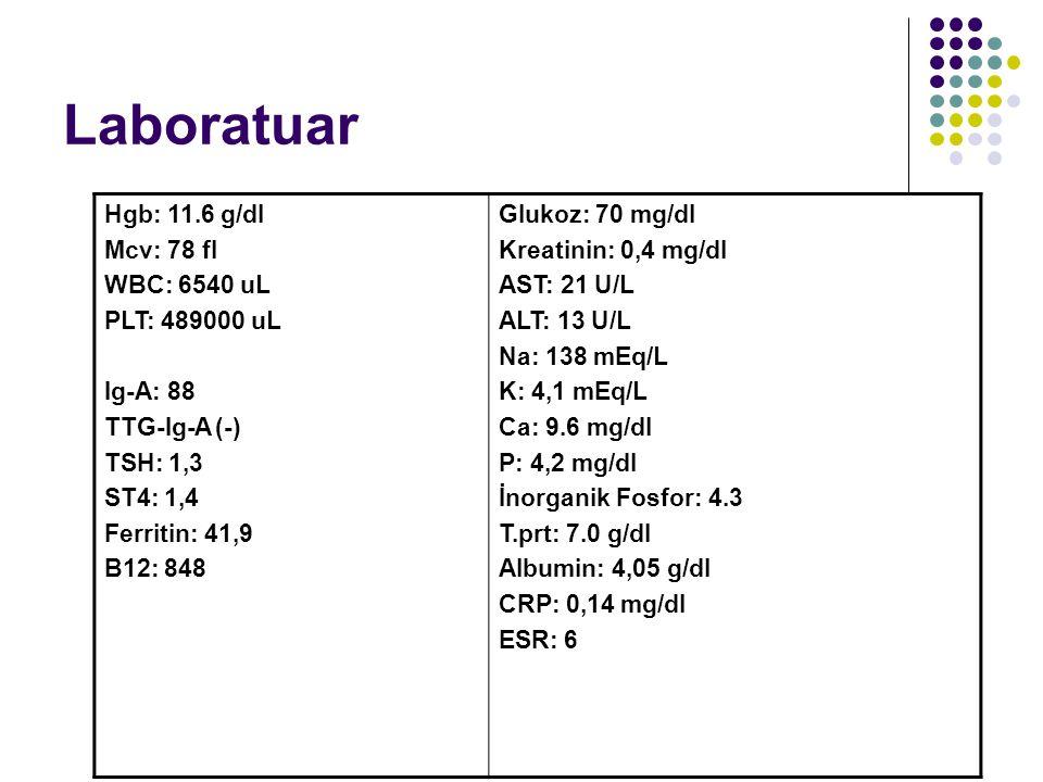 Laboratuar Hgb: 11.6 g/dl Mcv: 78 fl WBC: 6540 uL PLT: 489000 uL