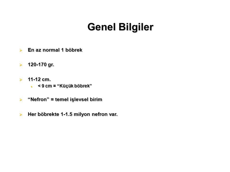 Genel Bilgiler En az normal 1 böbrek 120-170 gr. 11-12 cm.