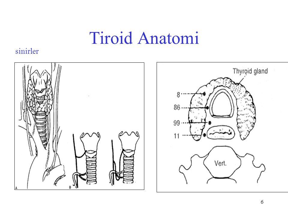 Tiroid Anatomi sinirler