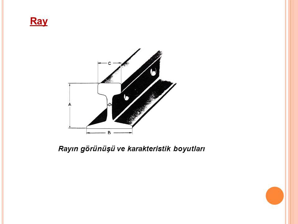 Ray Rayın görünüşü ve karakteristik boyutları