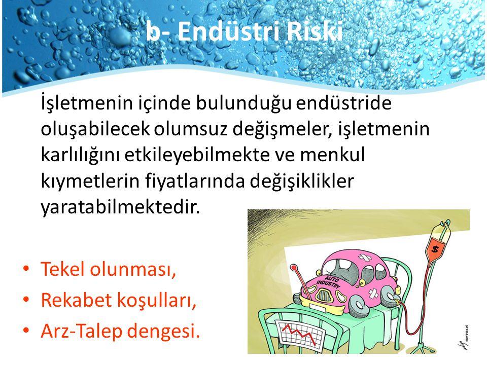 b- Endüstri Riski