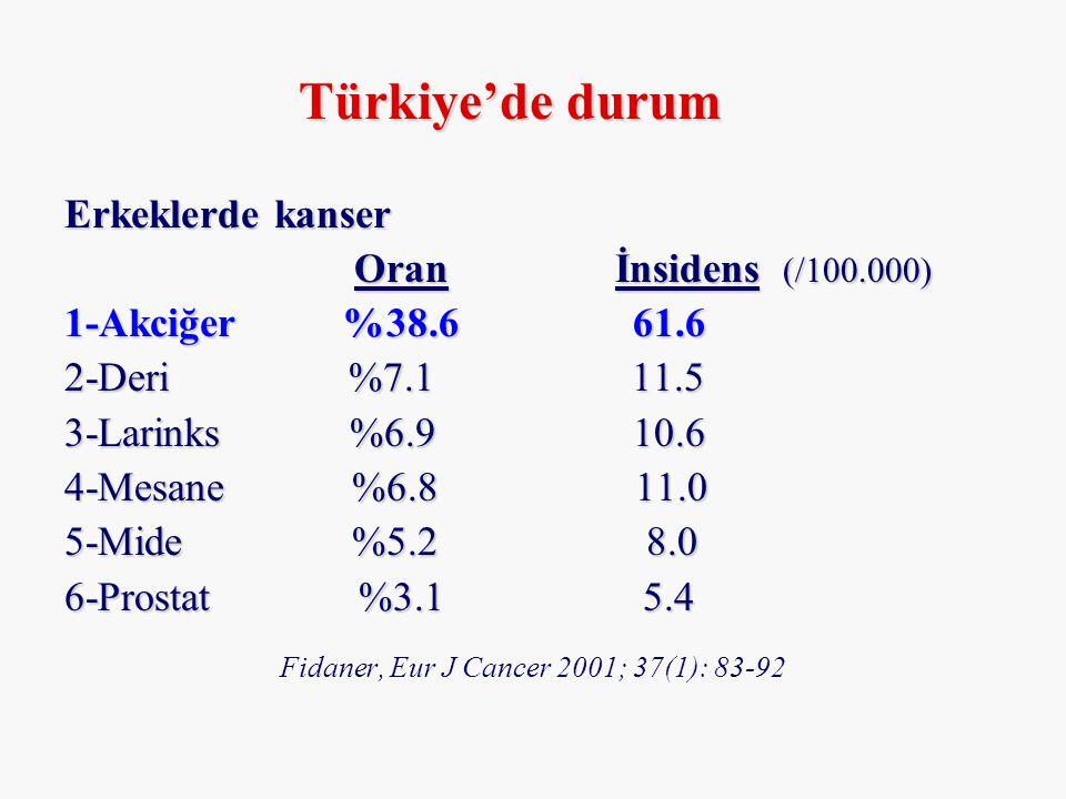 Fidaner, Eur J Cancer 2001; 37(1): 83-92