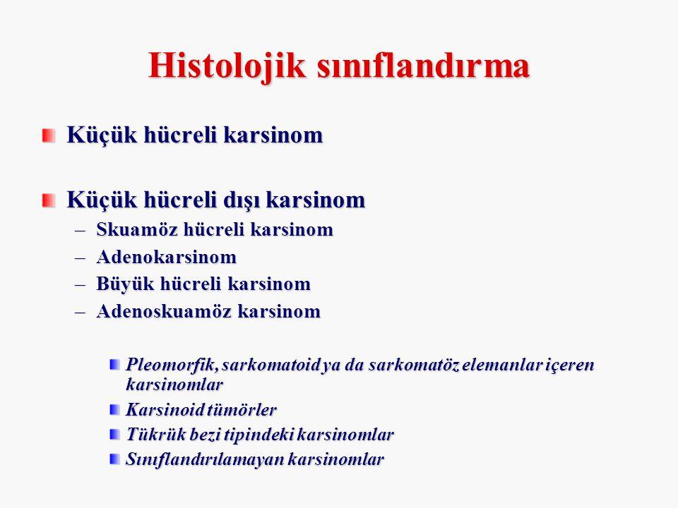Histolojik sınıflandırma