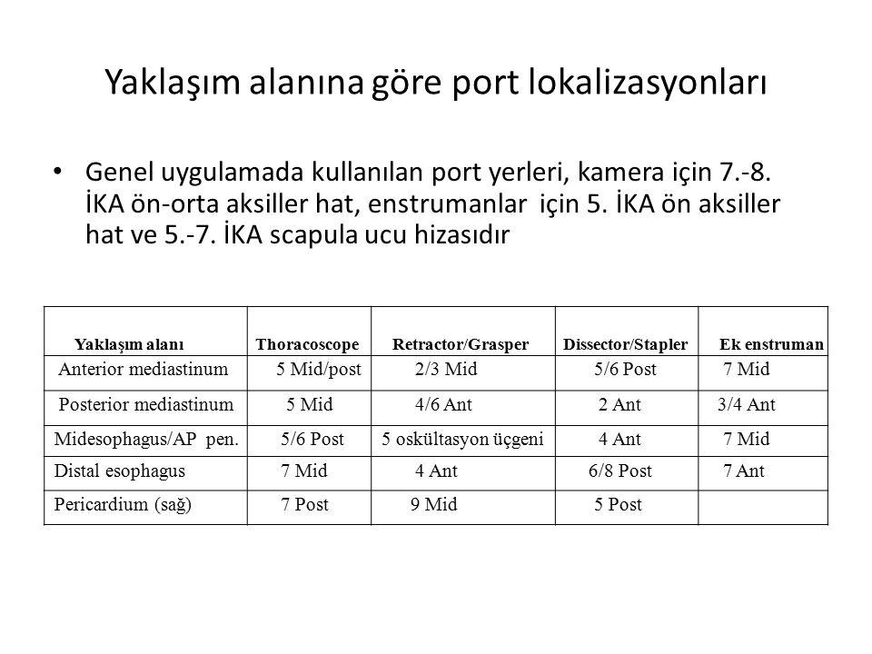 Yaklaşım alanına göre port lokalizasyonları