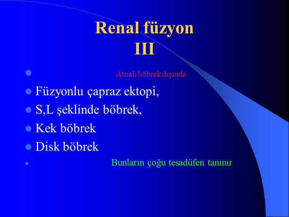 Renal füzyon III Atnalı böbrek dışında Füzyonlu çapraz ektopi,