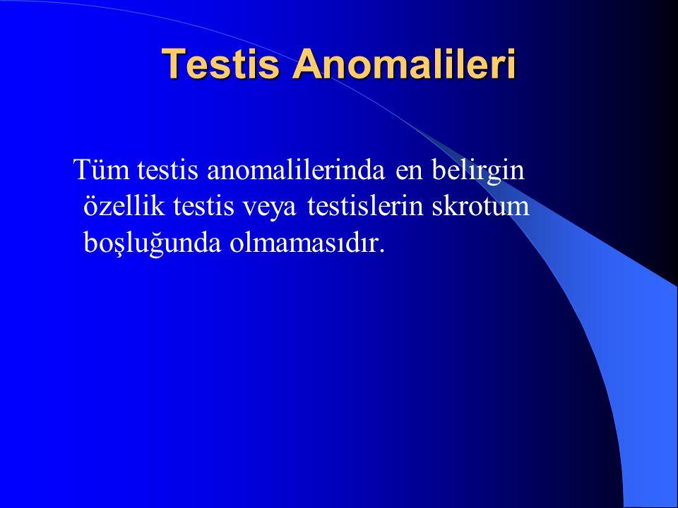 Testis Anomalileri Tüm testis anomalilerinda en belirgin özellik testis veya testislerin skrotum boşluğunda olmamasıdır.