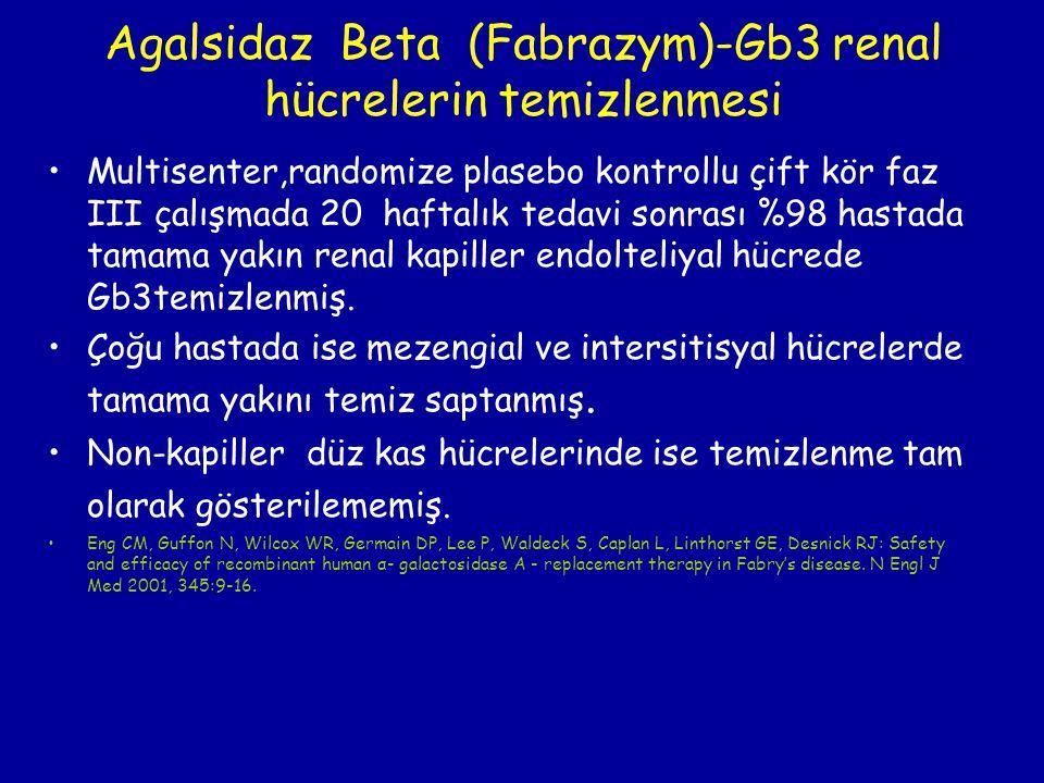 Agalsidaz Beta (Fabrazym)-Gb3 renal hücrelerin temizlenmesi