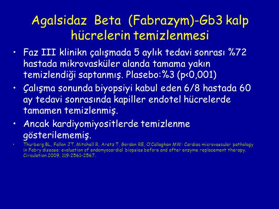 Agalsidaz Beta (Fabrazym)-Gb3 kalp hücrelerin temizlenmesi