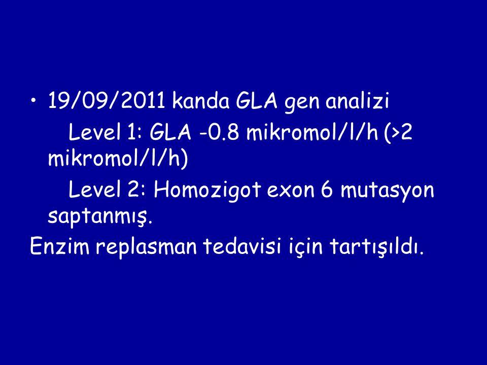 19/09/2011 kanda GLA gen analizi