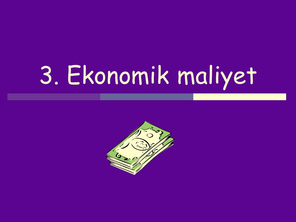 3. Ekonomik maliyet