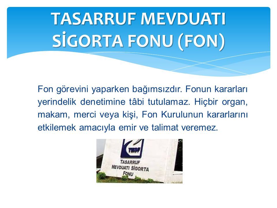 TASARRUF MEVDUATI SİGORTA FONU (FON)