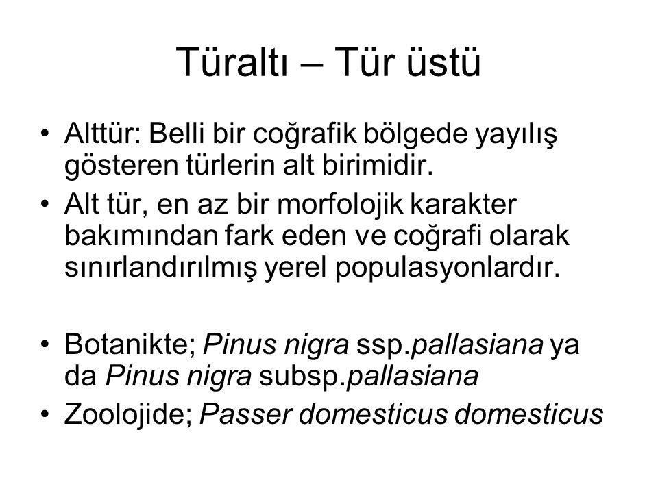 Türaltı – Tür üstü Alttür: Belli bir coğrafik bölgede yayılış gösteren türlerin alt birimidir.
