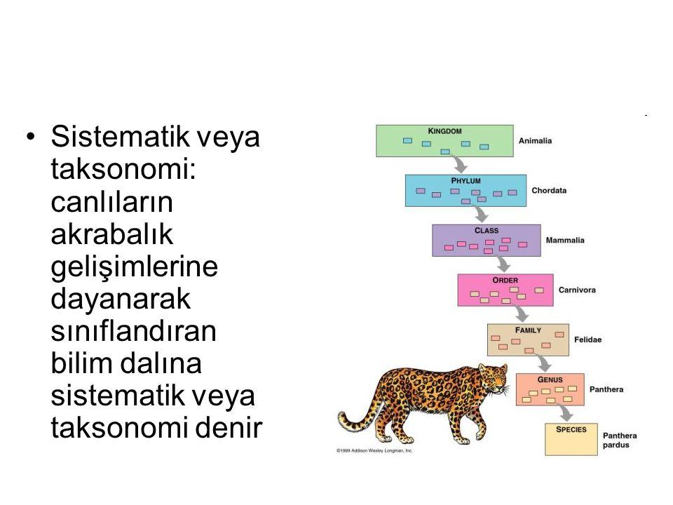 Sistematik veya taksonomi: canlıların akrabalık gelişimlerine dayanarak sınıflandıran bilim dalına sistematik veya taksonomi denir