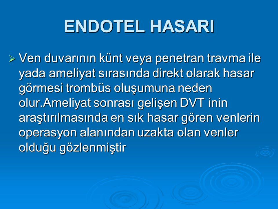 ENDOTEL HASARI