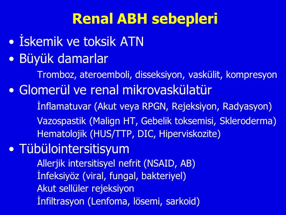 Renal ABH sebepleri İskemik ve toksik ATN Büyük damarlar