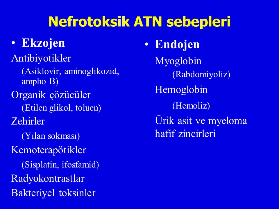 Nefrotoksik ATN sebepleri