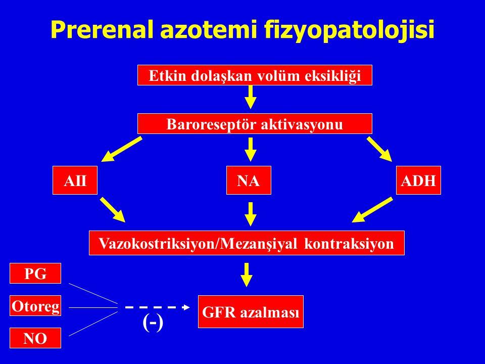 Prerenal azotemi fizyopatolojisi
