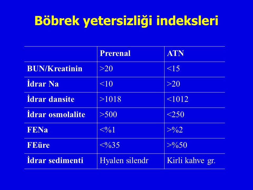 Böbrek yetersizliği indeksleri