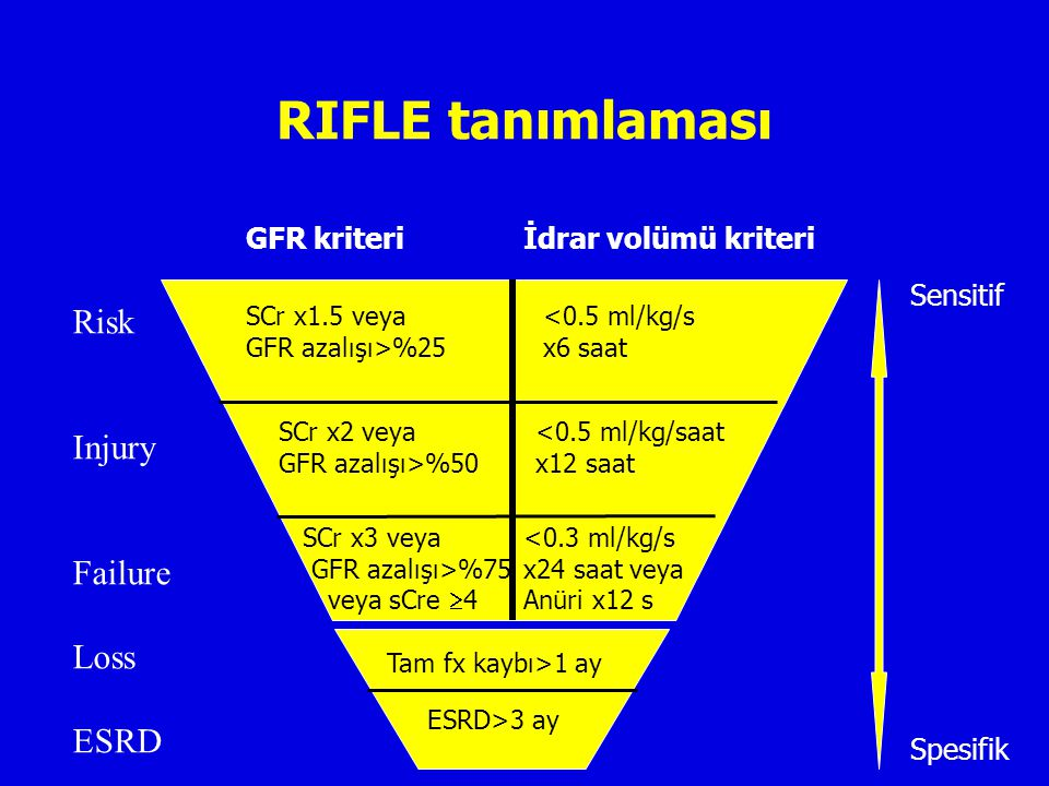 RIFLE tanımlaması Risk Injury Failure Loss ESRD