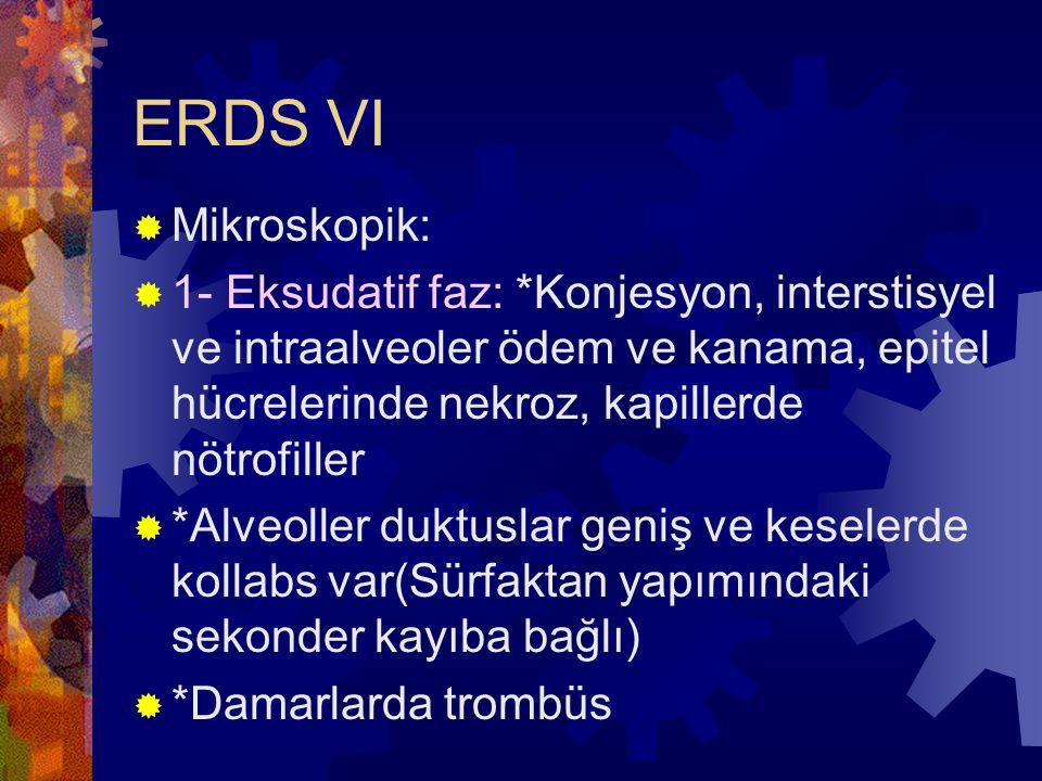 ERDS VI Mikroskopik: 1- Eksudatif faz: *Konjesyon, interstisyel ve intraalveoler ödem ve kanama, epitel hücrelerinde nekroz, kapillerde nötrofiller.
