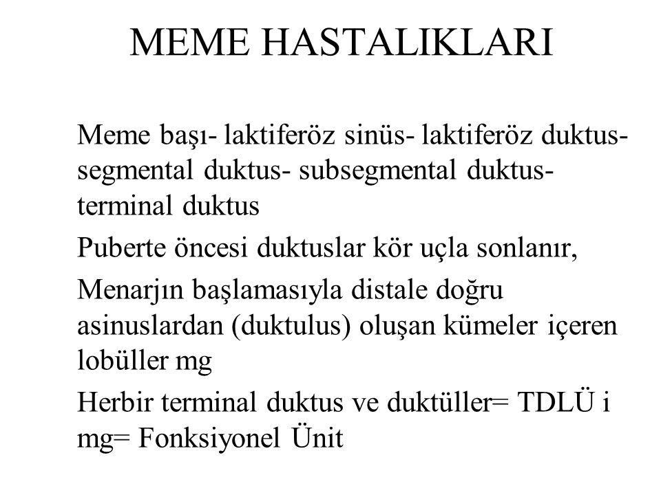 MEME HASTALIKLARI Meme başı- laktiferöz sinüs- laktiferöz duktus- segmental duktus- subsegmental duktus- terminal duktus.