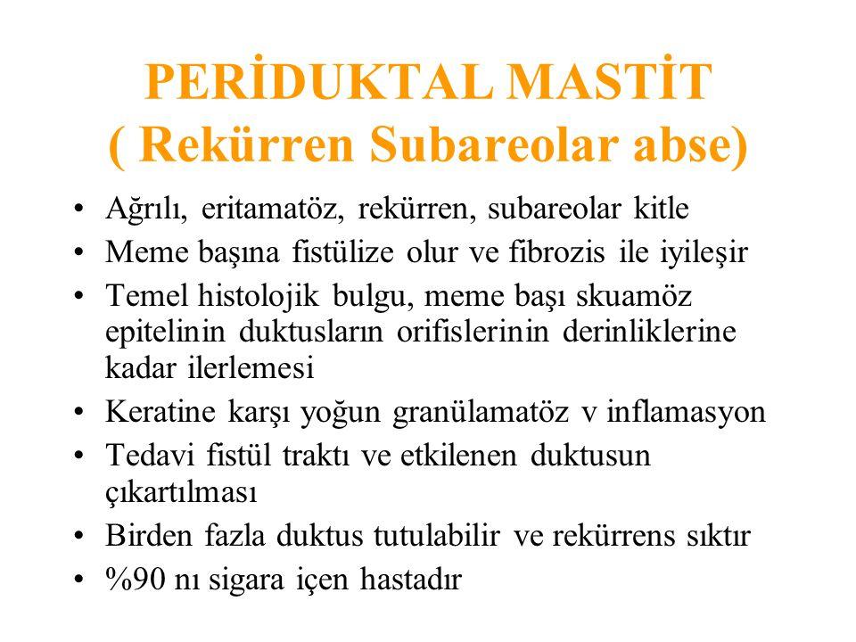 PERİDUKTAL MASTİT ( Rekürren Subareolar abse)