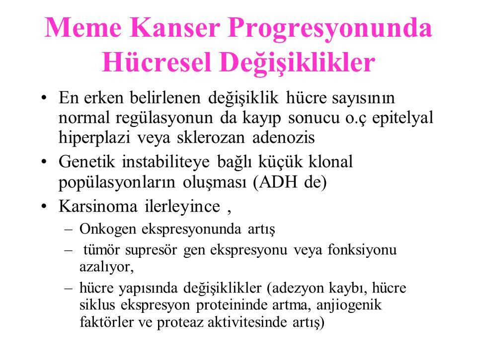 Meme Kanser Progresyonunda Hücresel Değişiklikler
