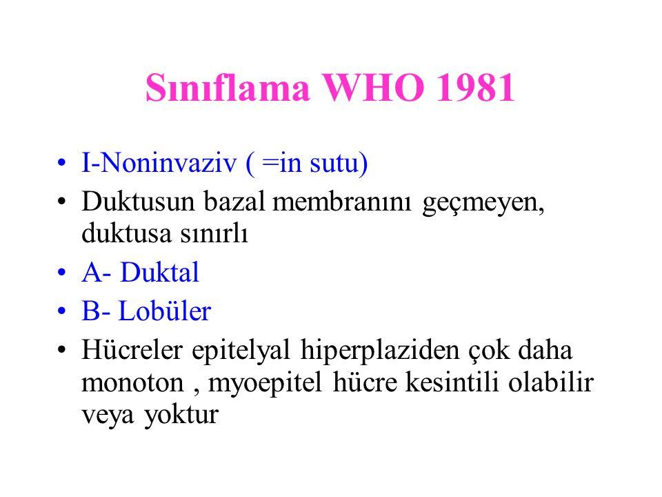 Sınıflama WHO 1981 I-Noninvaziv ( =in sutu)