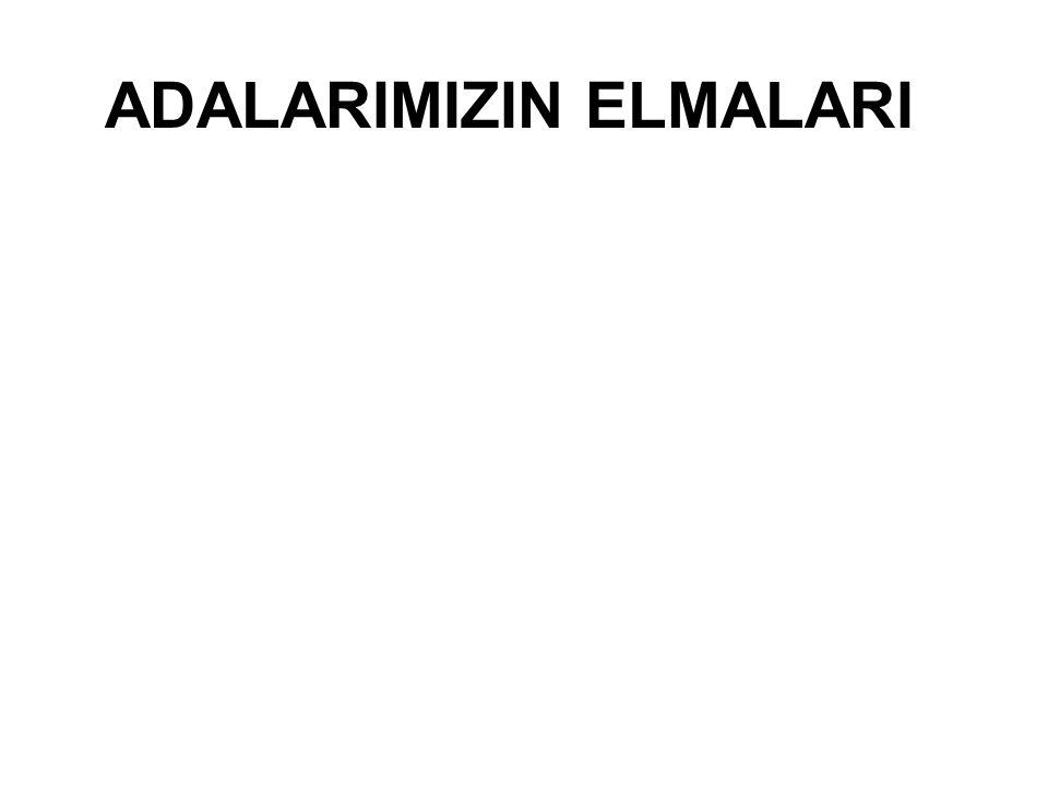 ADALARIMIZIN ELMALARI