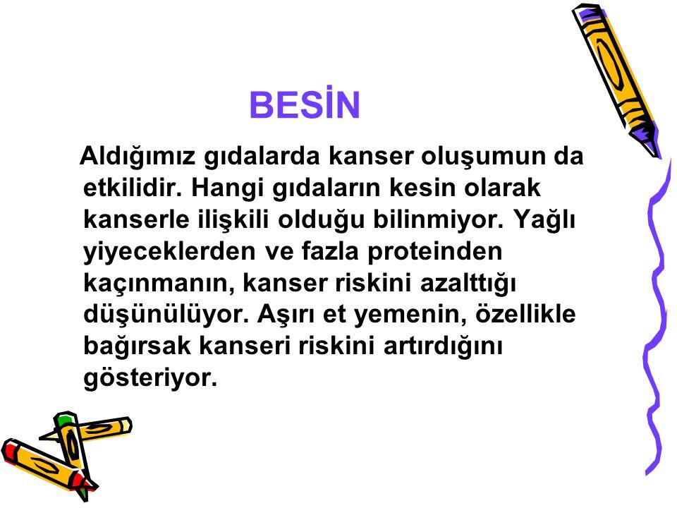 BESİN
