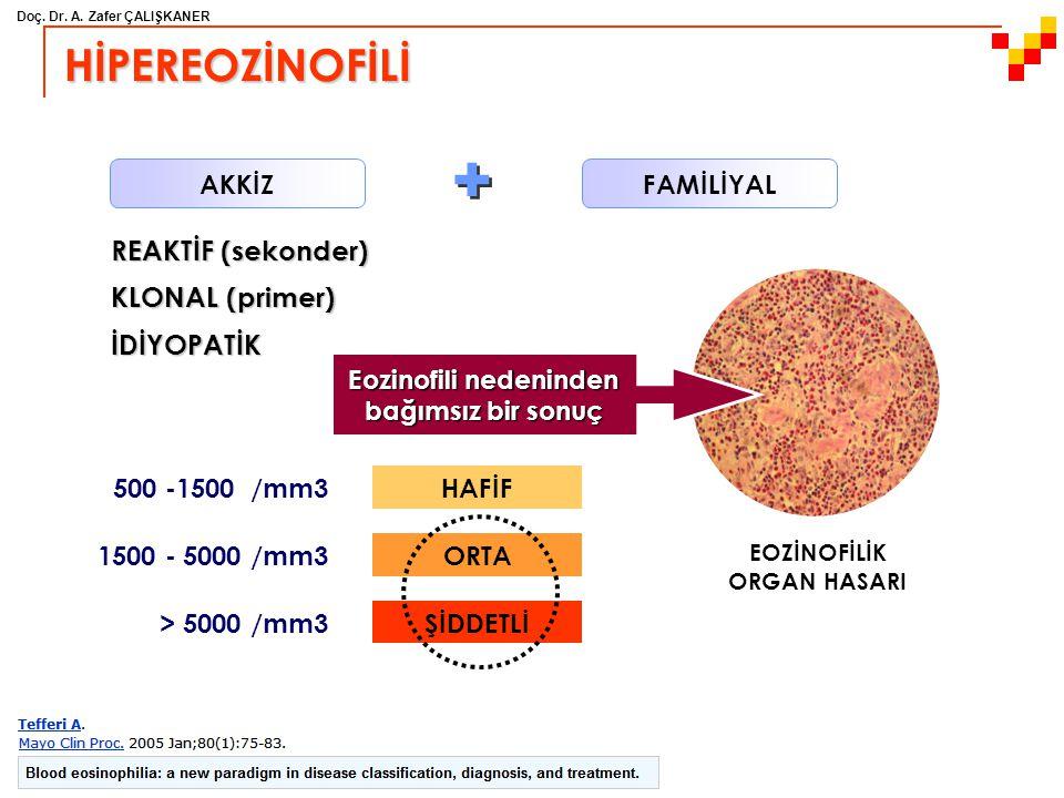 Eozinofili nedeninden bağımsız bir sonuç EOZİNOFİLİK ORGAN HASARI