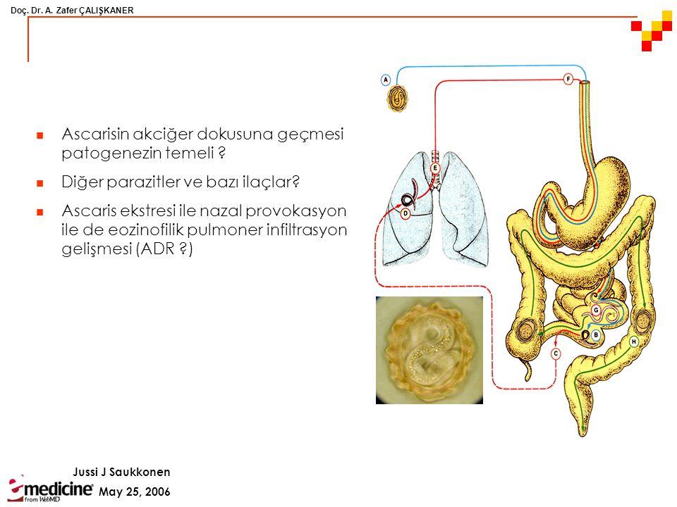 Ascarisin akciğer dokusuna geçmesi patogenezin temeli
